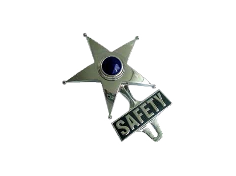 Safety Star License Plate Topper
